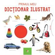 Primul meu dictionar ilustrat. Bebe invata
