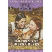 Old Town in the Green Groves: Laura Ingalls Wilder's Lost Little House Years, Paperback/Cynthia Rylant