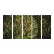 Set Tablouri Multicanvas 5 Piese Copac Secular - 90 x 150 cm