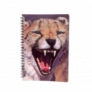 Merkloos Schriftje luipaard 3D 21cm