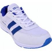 PROASE White Blue Marathon Running Sports Shoes