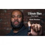 Roland Blues Cube Tone Capsule Ultimate Blues Ersatzteil Verstärkung