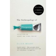 The Anthropology of Turquoise: Reflections on Desert, Sea, Stone, and Sky, Paperback