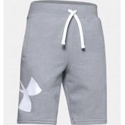 Under Armour Jongensshorts UA Rival Fleece Logo - Boys - Gray - Grootte: YL