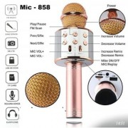 BSH WS-858 Wireless Handheld Bluetooth Mic with Speaker Microphone