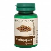 DACIA PLANT FARINGOPLANT comprimate