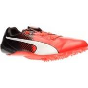 Puma Bolt evoSPEED DISC TRICKS Running Shoes For Men(Black)