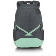 Fastrack A0754NGR01 24 L Laptop Backpack(Grey, Green, Black)