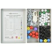 Diwenhouse Chemistry Molecular Model Kit, Biochemistry Organic & Inorganic Modeling Student Set and
