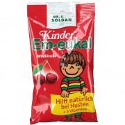 Dr. C. SOLDAN GmbH Kinder Em-eukal® Wildkirsche