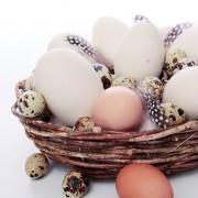 Lunchservet Quail Eggs