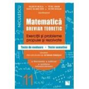 Matematica - Clasa 11 - Breviar teoretic filiera teoretica profilul real mate-info - Petre Simion