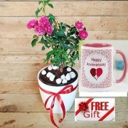 ES KASHMIRI ROSE PLANT DECORATIVE With Gift Anniversary Gift Mug