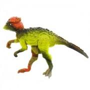 Dinomagnes 7