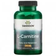 L-Carnitine (100 tab.)