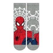 Spider-man Grey: 23-26