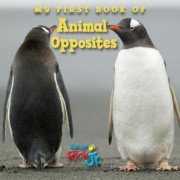 My First Book of Animal Opposites, Hardcover