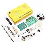 Bloomerang 3Pcs Am Fm Radio Electronics Kit Electronic DIY Learning Kit