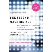 The Second Machine Age: Work, Progress, and Prosperity in a Time of Brilliant Technologies, Paperback