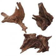 EBI Nature - Wood Mangrove 30-50cm L