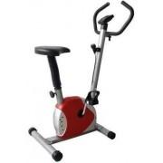 Bicicleta Fitness mecanica Fittronic 100B (Rosie)