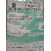 Adaptare Si Integrare In Mediul Industrial - Spitalul Clinic Socola