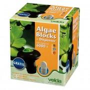 VELDA Algae blocks + dispenser