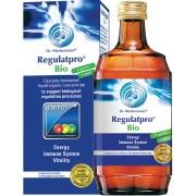 Dr. Niedermaier Regulatpro BIO koncentrat organiczny na układ odpornościowy i trawienie 350 ml - odporność i trawienie