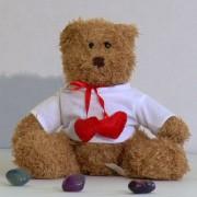 Ursulet de plus cu tricou personalizat