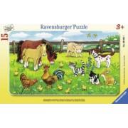 PUZZLE ANIMALE PE PAJISTE 15 PIESE Ravensburger