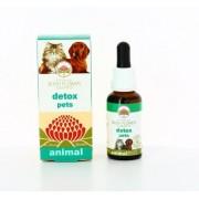 Bush Biotherapies Pty Ltd Detox Pets 30ml