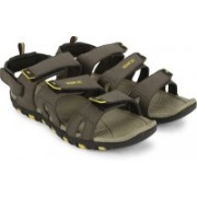 Newport Men Olive/Yellow Sports Sandals