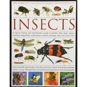 The Complete Illustrated World Encyclopedia of Insects: A Natural History and Identification Guide to Beetles, Flies, Bees, Wasps, Mayflies, Dragonfli, Hardcover
