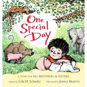 One Special Day: A Story for Big Brothers and Sisters, Hardcover