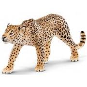 Leopard Schleich