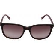 Boss Orange Wayfarer Sunglasses(Brown)