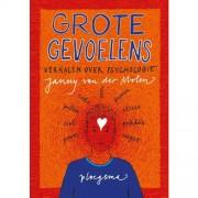 Grote gevoelens - Janny van der Molen