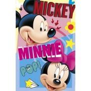 Mickey Minnie takaró