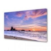 Tablou Canvas Premium Peisaj Multicolor Plaja pastel in California Decoratiuni Moderne pentru Casa 80 x 160 cm