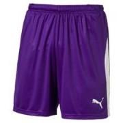 PUMA Shorts LIGA Met Binnenbroek - Violet paars Kinderen
