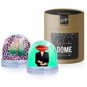 Sneeuwbol 'Wonder Dome' - Lippen & Bloem