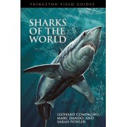 Sharks of the World, Paperback