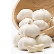 fokhagyma-pure white 60+