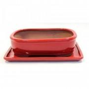 Planeta Huerto Bonsái Tiesto Basic ovalado rojo 20 cm + plato