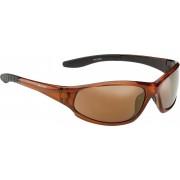 Alpina Wylder CM brown transparent - schwarz 91