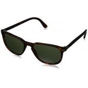 Persol PO3019S anteojos de sol 24/31 Havana (cristal verde), 55 mm
