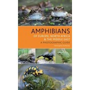 Amphibians of Europe, North Africa and the Middle East: A Photographic Guide, Paperback/Christophe Dufresnes
