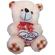 Suraj baby soft toy just for you and i love u heart teddy with checks 17 cm