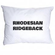 Rodhesian Ridgeback Örngott