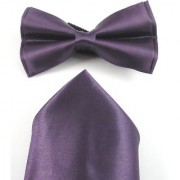 Voici France- Pre knot double layer Purple bow Tie with Pocket Square